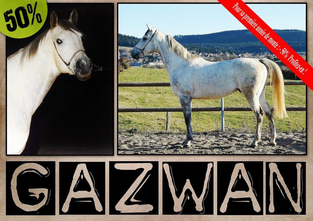 soldes-gazwan-22